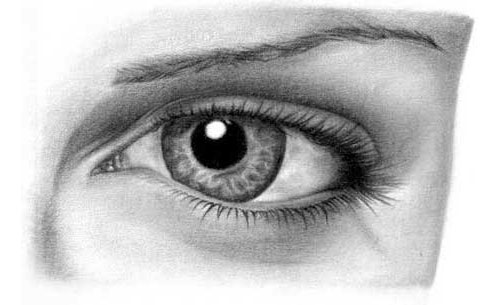 drawing-eye The Best Drawing Tutorials to Learn How To Draw